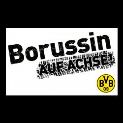 BVB-Autoaufkleber Borussin