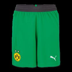 BVB-Torwarttrikothose 18/19 (grün)