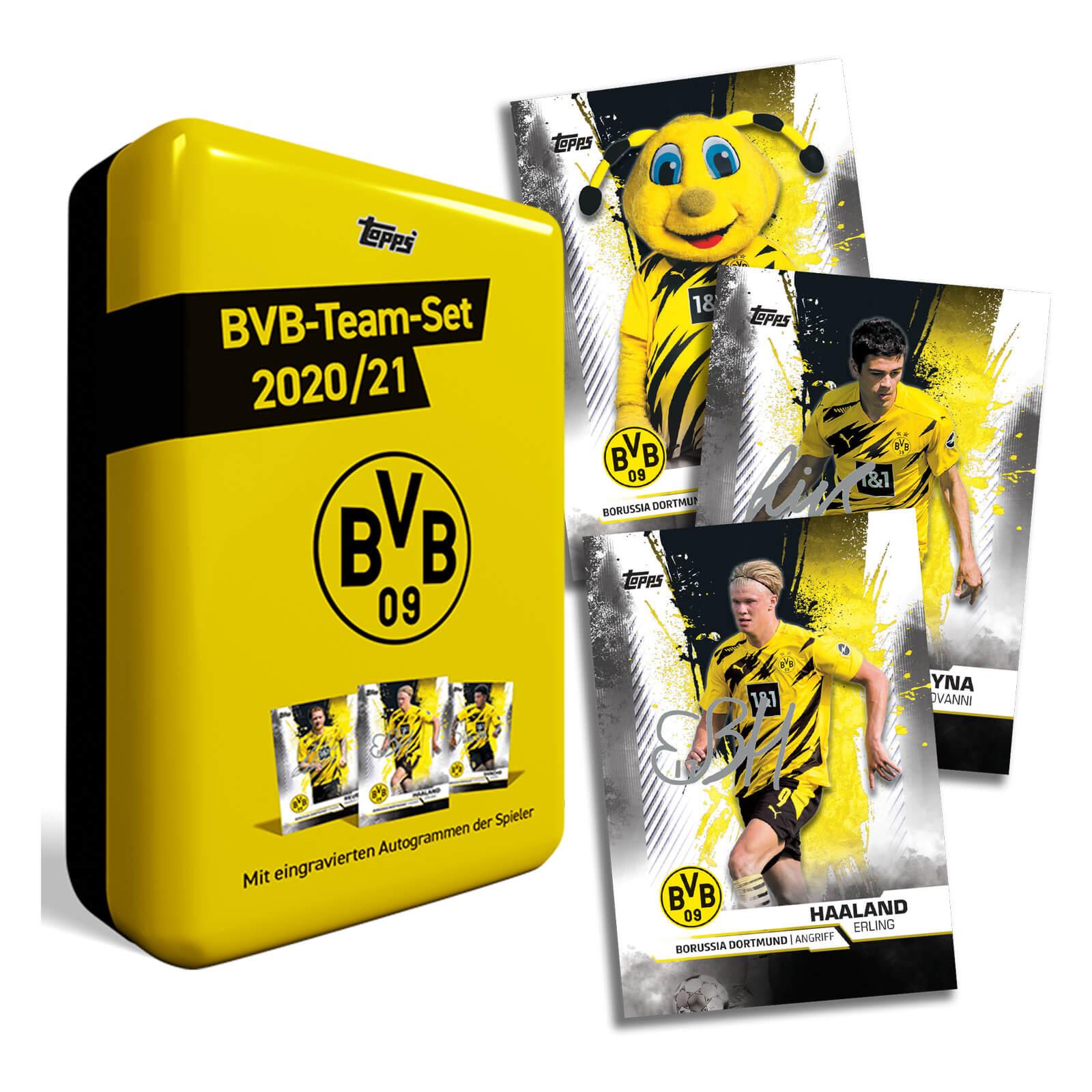 Borussia Dortmund BVB 09 BVB-Mini Radierer 09er Set