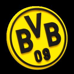 BVB-Magnet 3D